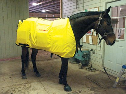 Demonstrating infrared horse blanket from Thermotex