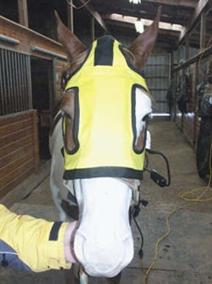 Thermotex Therapeutic Horse Hood with Far Infrared Heat