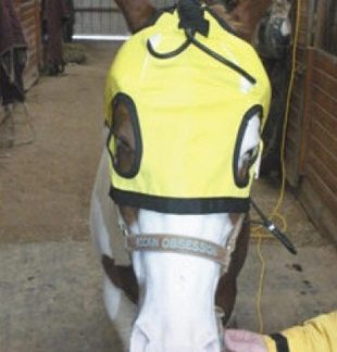 Thermotex Infrared Heat Therapeutic TMJ Horse Hood